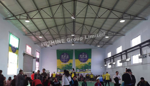 LED High Bay Light in Table tennis Court in China