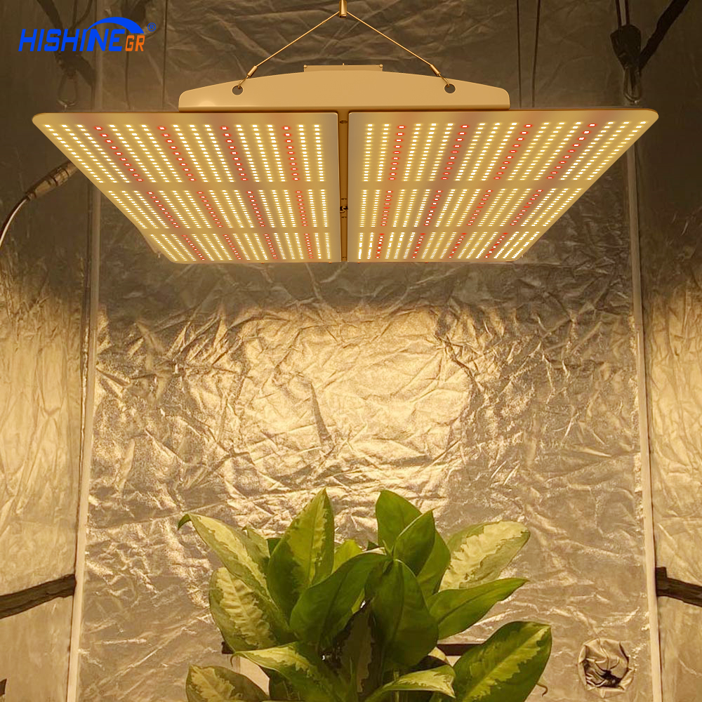 PG02 600W LED Grow Light